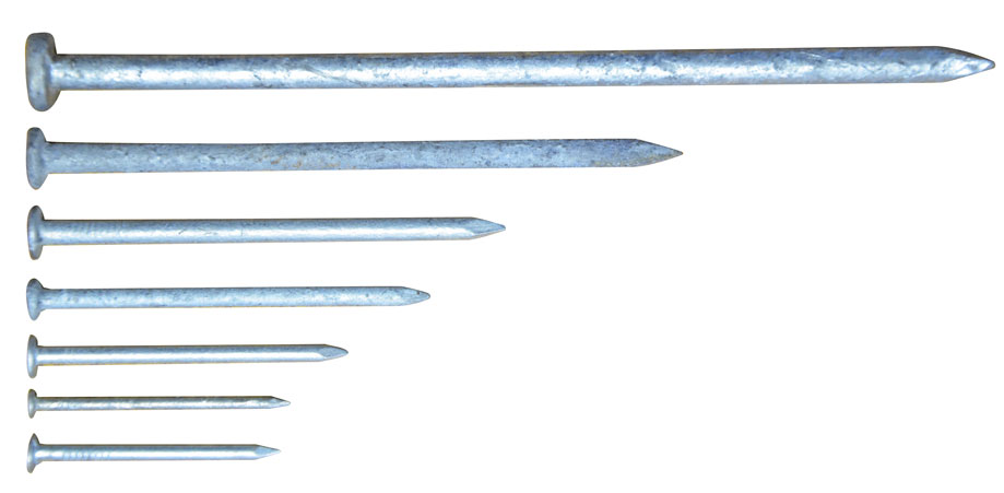 Galvanised Flathead Nails