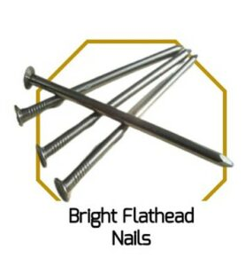 Bright Flathead Nails