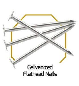 Galvanised Flathead Nails