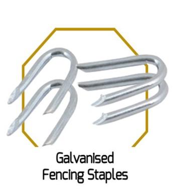 Galvanised Staples Nails