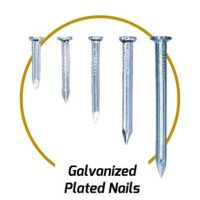 Galv. Plated Nails
