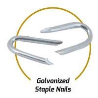 Galv. Staple Nails